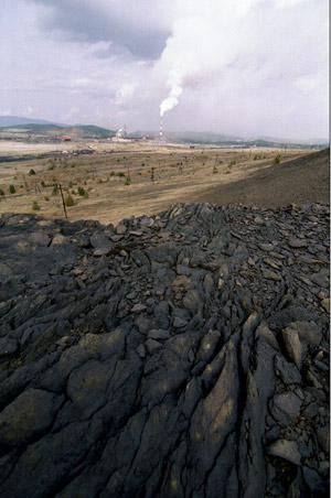 кислотные дожди эрозия почвы